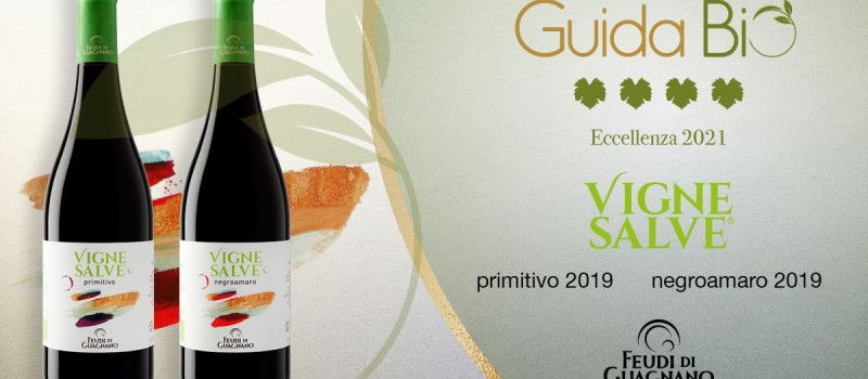 An important accolade by Guida Bio to the Vignesalve wines